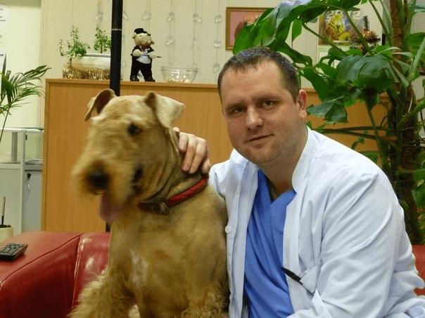 Ветеринарный врач - дерматолог в Мытищах - Юрасов Александр Валерьевич